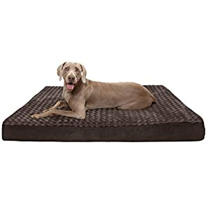 Furhaven Pet – Traditional Orthopedic Foam Mattress Dog Bed for Dogs & Cats – Multiple Styles, Sizes, & Colors