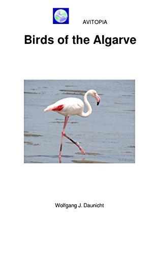 AVITOPIA - Birds of the Algarve (English Edition)
