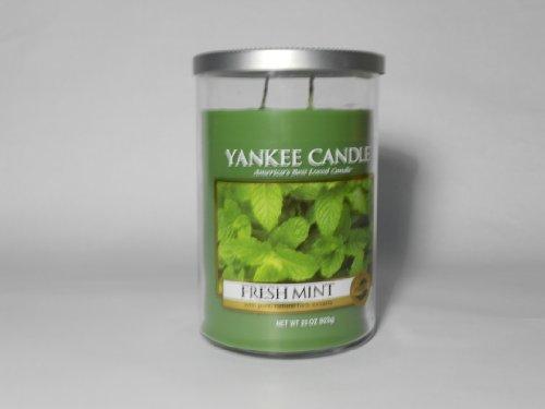 Yankee Candle Fresh Mint 22oz Large 2 Wick Tumbler