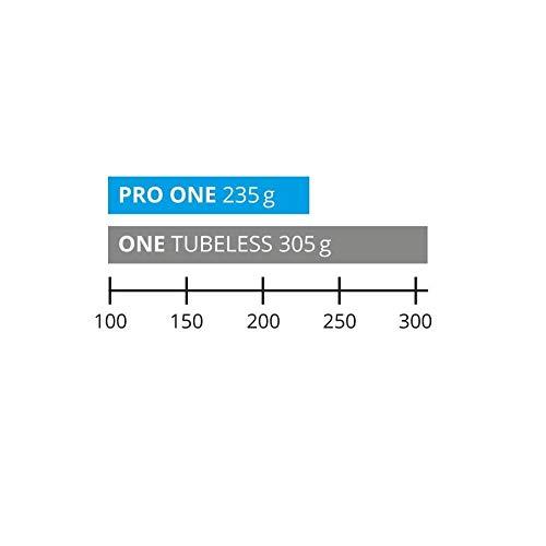 2本セットSCHWALBEPROONEチューブレスイージー700cタイヤシュワルベプロワン(700×25c)[並行輸入品]
