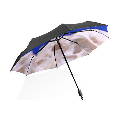 Umgekehrter Regenschirm Für Kinder Anemone Tier Aquarium Clownfisch Marine Ozean Tragbare Kompakte Taschenschirm Anti Uv Schutz Winddicht Outdoor Reise Frauen Erwachsene Regenschirm Für Frauen