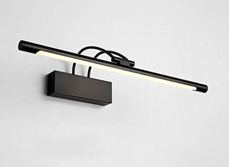 WTL Lighting Spiegel Scheinwerfer Spiegel Lampe Badezimmer Badezimmer Spiegel Schrank Licht Spiegel Bild Licht Wandleuchte LED Make-up Licht (Farbe   Warmes Licht-55cm)