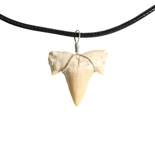 Shark Tooth Necklace for Boys Girls Teens Kids Men - covid 19 (Fossil Leather Necklace coronavirus)
