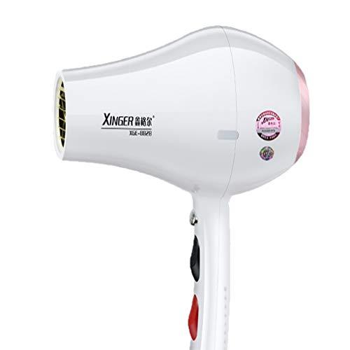 Peluquería secador de Pelo Especial de Alta Potencia 8000w peluquería 6000w secador de Pelo en casa Que sopla el Cabello 3000 (Color : A(6000w))