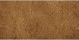 Concrete Stain. Water-Based Stain 1 Gal Safari Tan Eco-Stain