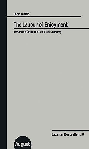The Labour of Enjoyment: Towards a Critique of Libidinal Economy: Lacanian Explorations IV