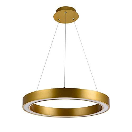 LONGLANSI Lámpara de Techo Araña, Anillo Circular Dorado De LED Acrílico Anillo...