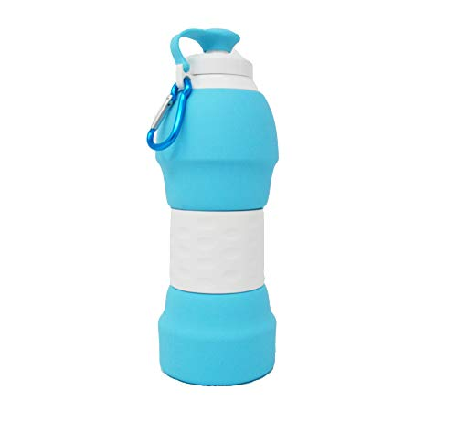 ZestyNest Collapsible Silicone Portable Water Bottle (Gray)