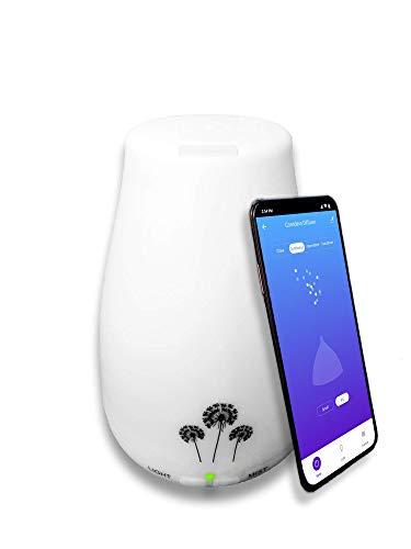 Diffusore di Oli Essenziali SMART, con WiFi e App | Aromaterapia | Umidificatore ad ultrasuoni con Aromi | Controllo Vocale Alexa e Google Home | Lamp