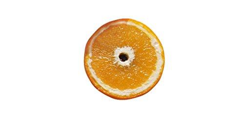 Orange disque – magnétique oranges factice factice, Dekomagnet, magnétique, tableau magnétique, cadeau cuisine magnétique, cadeau idéal pour la fête des mères, cadeau saint-valentin, fruits, Orange aimant, aimant magnétique orange