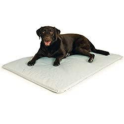 Budget Friendly cooling dog bed