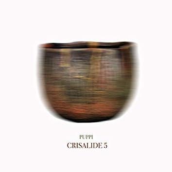 Crisalide 5