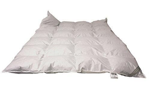 Betten Hofmann Daunen Kassetten Bett 155x220cm 4x6 Karo 1200g Gänsedaunen