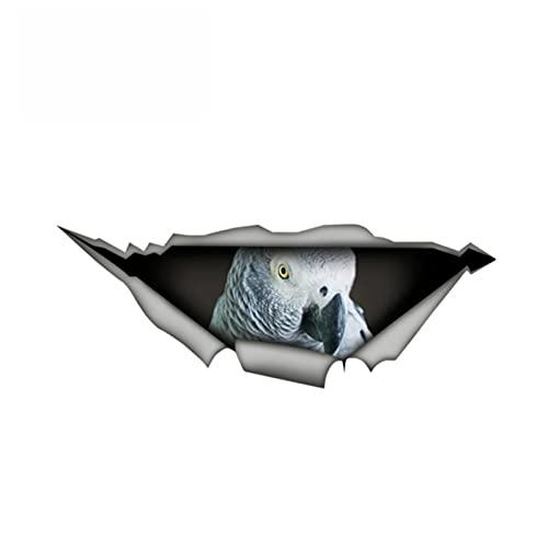 XLYDF Calcomanía de metal desgarrado creativo Africano Grey Bird Etiqueta de vinilo Parrot Pegatinas de coche Ventana de parachoque Portátil Decoración del coche Estilo, 13 cm * 5 cm