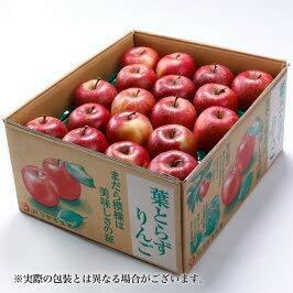 りんご 葉とらず太陽ふじりんご 糖度12度以上 青秀 28〜40玉 約10kg 青森県産 JAつがる弘前 新年 お正月 ギフトサンふじ 林檎 リンゴ 1月上旬発送
