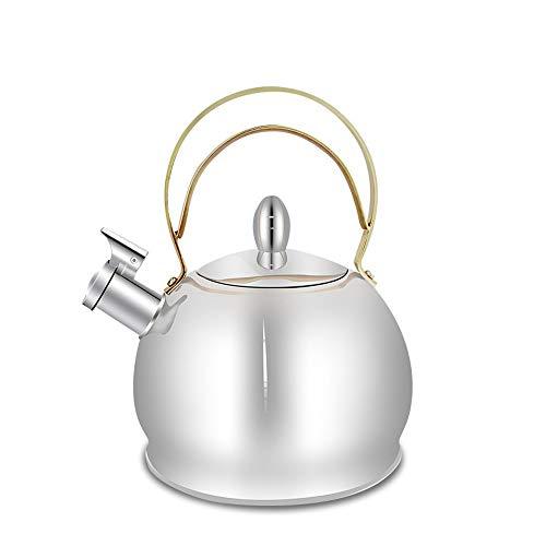 calentador de agua Hervidor de gas de acero inoxidable Hervidor de gas natural de gran capacidad Cocina de inducción de gas Botella de agua caliente universal 3L, la mejor opción for electrodomésticos