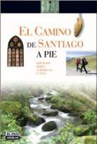 Camino de Santiago a pie, el (Rutas A Pie)