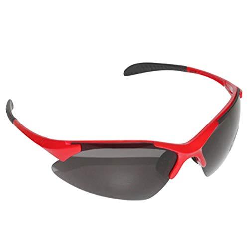 Fietsbril voor volwassenen Newton Action, frame rood/zwart (3 verwisselbare glazen), in zachte doos