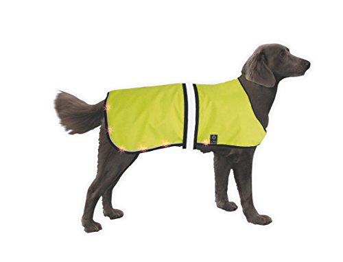 Nobby Safety Vest Led, Medium