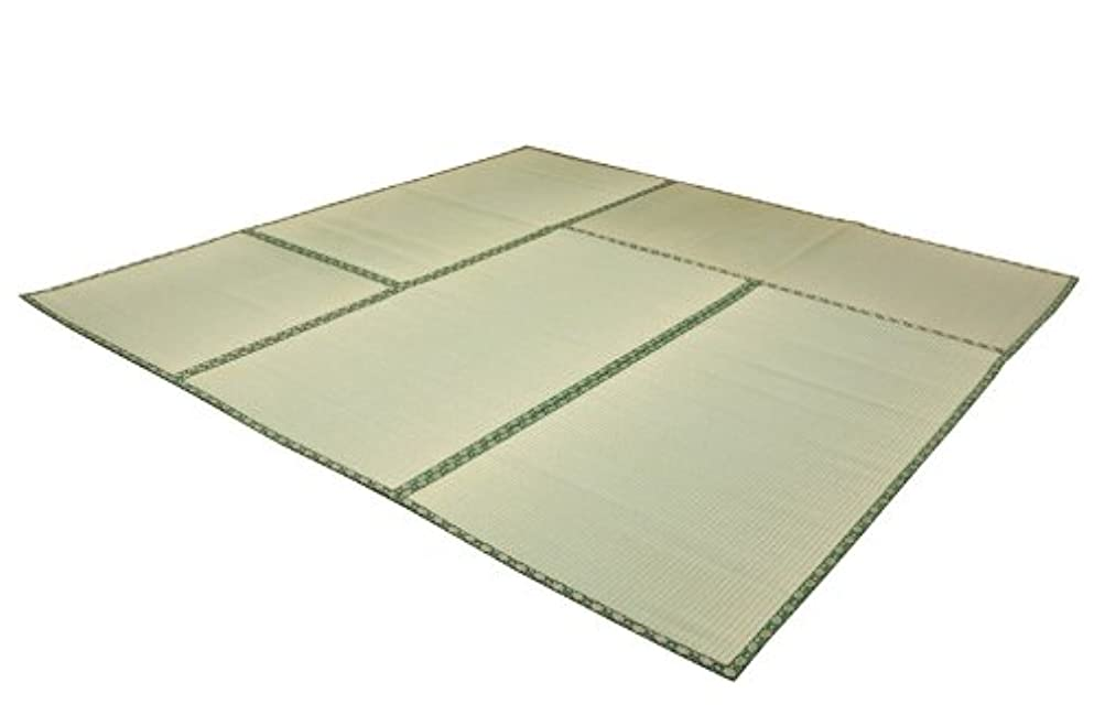 飛行機ビザまあイケヒコ い草 上敷き 糸引織 『四季の暮らし』 本間 8畳 (約382×382cm)