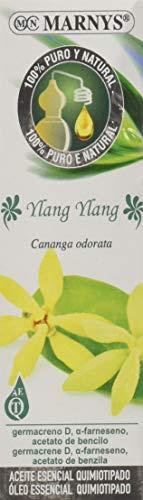 MARNYS Aceite Esencial Ylang Ylang 100% Puro Quimiotipado 15ml
