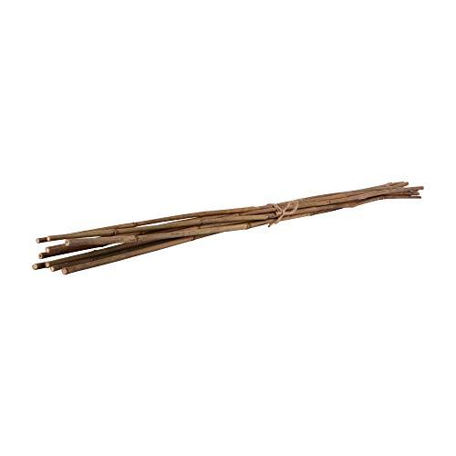 Nature by Kolibri Bambusstäbe, Pflanzenstäbe zur Stabilisierung von Pflanzen im Garten, Rankstäbe Bambus 120 cm naturfarbend, 10 Stück