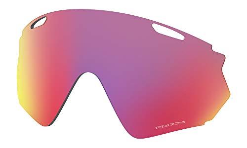 Oakley RL-Wind-Jacket-2.0-6 Lentes de reemplazo para Gafas de Sol, Multicolor, 55 Unisex Adulto
