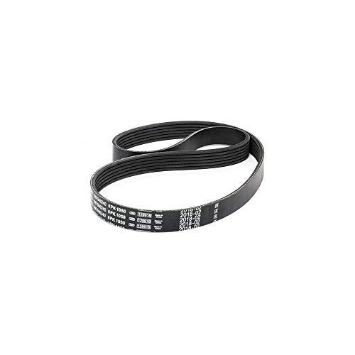 Keilriemen 10 x 1880 Li DIN 2215 V-Belt