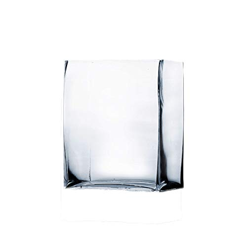 WGV Glass Rectangle Block Vase, Width x Length 2 x 5, Height 6, Clear Floral Planter Container Votive Candle Holder Wedding Party Event, Home Office Decor, 1 Piece