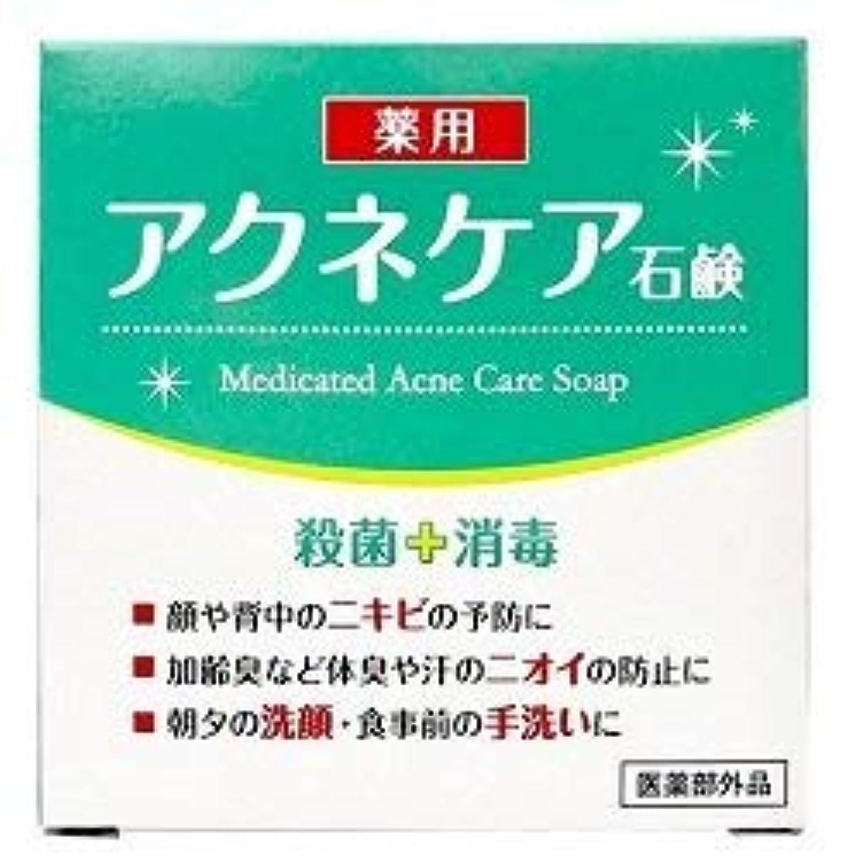 邪魔するハチレルム薬用 アクネケア 石けん 80g (医薬部外品)