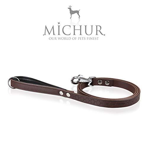 MICHUR Design Leine, Hundeleine Leder, Lederleine Hund, PASSEND ZUM Halsband Design, Braun, Leder