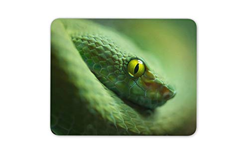 N\A Alfombrillas para ratón de Superficie para Juegos Alfombrilla para ratón de Serpiente Verde Impresionante - Computadora de Piel de Serpiente de Reptil