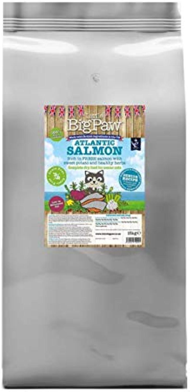 Little Big Paw Complete Dry Senior Cat Food Atlantic Salmon, 15 kg