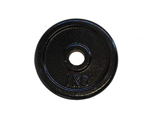 TECNOFIT Disco Pesi ghisa 1 kg 25 mm - Set da 10 Pezzi