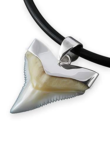 Fly Style echter Haizahn Kettenanhänger mit 925 Silber Fassung, Größe:21 mm