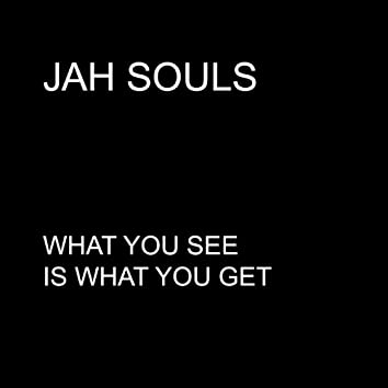What You See Is What You Get - Single