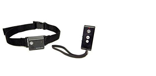 Company of Animals Vibrierendes Halsband mit Fernbedienung