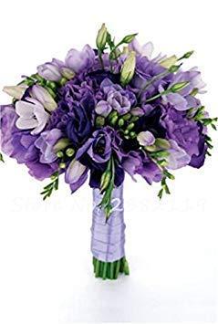 Potseed 100 Stück Freesie Samen Schöne Blumen Orchid Freesie Rhizome Bulbous Blumen Mischung Farben So Fragrant für Gartendeko 10