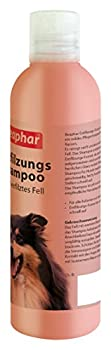 Beaphar Shampoing démêlant | Démêler le pelage de chien | pH neutre | Soin du pelage pour chiens à poils longs | Démêlage sans tondeuse | 250 ml
