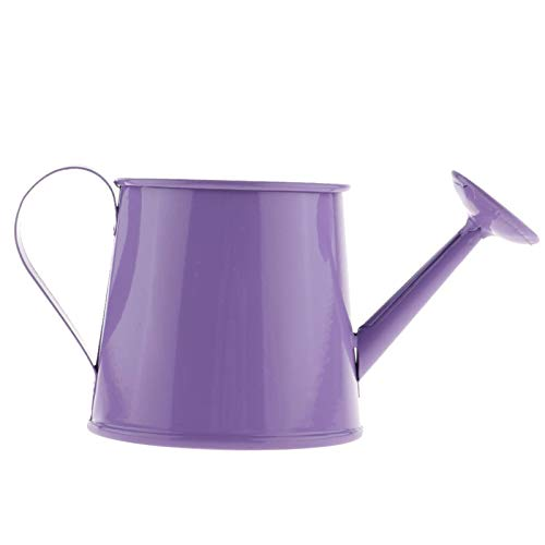N\C Mini Metal Iron Watering Can, Iron Pot Vase Garden Bonsai, Garden Flowerpot Watering Device, Plant Flowerpot Watering Can, Indoor and Outdoor Garden Sprayer, Garden Flower Watering Can
