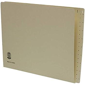 FALKEN Hängemappen DIN A4 Hängeregistratur UniReg 230 g//m² Kraftkarton farbig