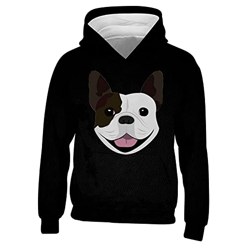 DIYOOD Youth 3D Print French Bulldog Hoodie Boys Girls Casual Pullover Hoodies Hooded Sweatshirts Tops with Pocket X-Large