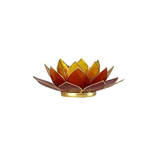 Lotus Teelicht Kerzenhalter aus Capiz Muscheln in 3 Colours