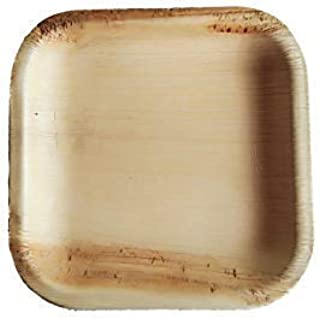 Areca Palm Leaf Plates - Natural Compostable Dinnerware for Picnic, Camping, Party, Wedding, Birthday, Thanksgiving, Christmas - Biodegradable, Microwavable Dining Supplies (25, 6x6 Sq)