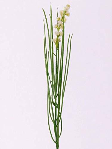 artplants.de Künstliche Kräuter Schnittlauch AHRAS mit Blüten, Creme, 50cm - Künstliches Schnittlauch