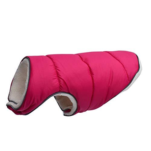 YINLING Ropa para Perros, Abrigada En Otoño E Invierno para Mascotas, Ropa Reflectante, Perros Medianos Y Grandes,Rose Red,4XL
