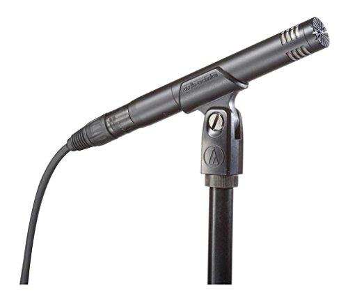 Audio-Technica AT2031 Microfono a condensatore cardioide per strumenti