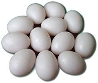 SallyFashion Easter Eggs Wooden Fake Eggs 9Piece -White Color