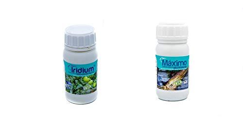 PACK MAXIMO®+IRIDIUM. Oídio/Mildiu/Botrytis/Hongos. Multi Bio-Fungicida Bioestimulante especia. Protector, barrera física efecto multi choque (enfermedades internas/externas). Ecologico (1.200 m2)