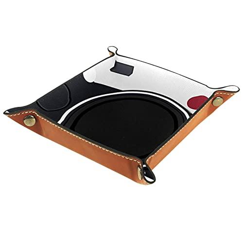 MUMIMI Schmuckschatulle, Aufbewahrungsbox für Ringe, Ohrringe, Schmuck, Ringhalter, Kamera, Skizze